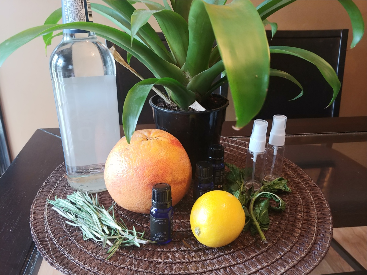 Homemade All Natural Hand Sanitizer
